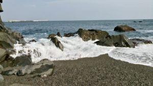 桂浜の岩場