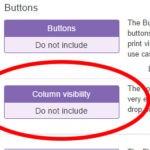 jQueryのDataTablesで表示の制御を加える方法